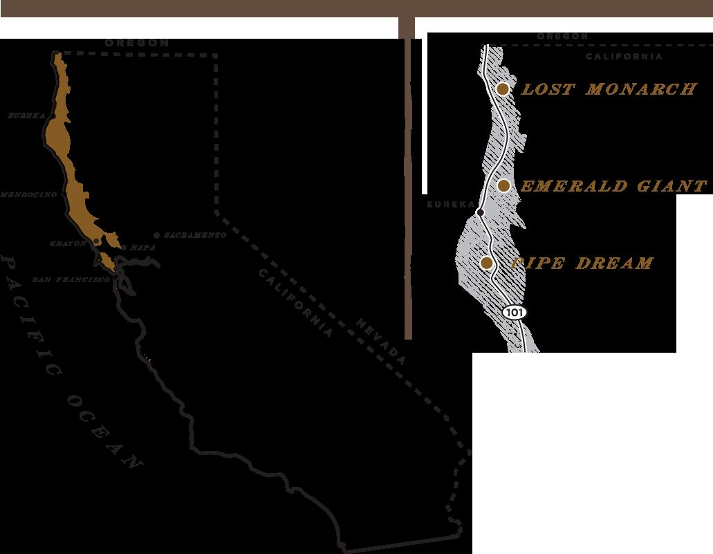 The Redwood Empire
